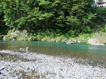 青梅の川辺