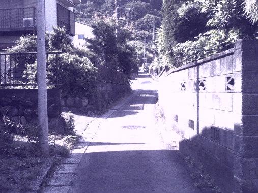 PICT0092.jpg