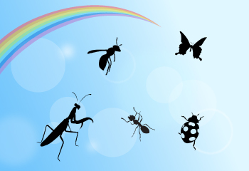 虫たちのミュージカル【Bugs Dream】