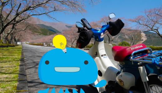 リトルカブで富士霊園の桜を見に行くツーリング
