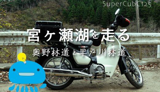 スーパーカブC125で早朝の丹沢大山から宮ヶ瀬湖を走る