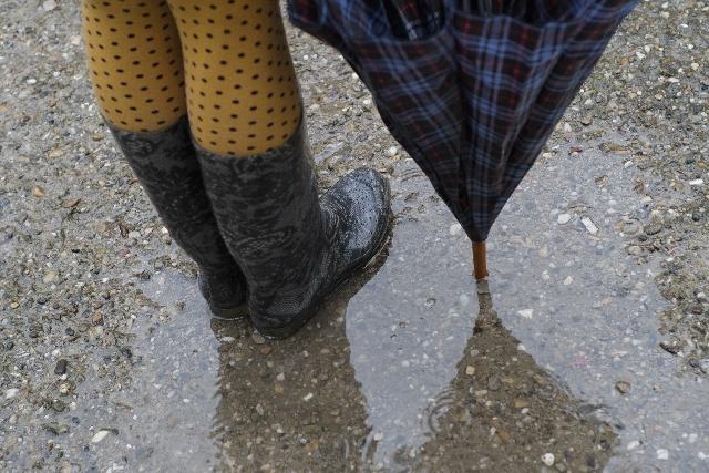 軽くて歩きやすい、折りたたんで持ち運べちゃう日本野鳥の会の長靴