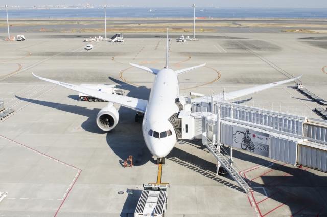 東京から大阪へくらげが空を飛ぶ
