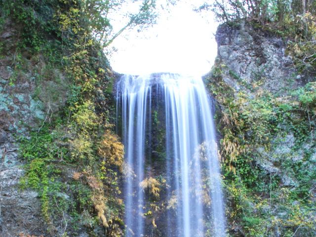夕日の滝でマイナスイオン充填