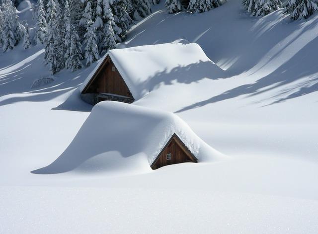 雪のくらげ
