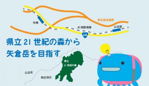 県立21世紀の森から矢倉岳を目指す