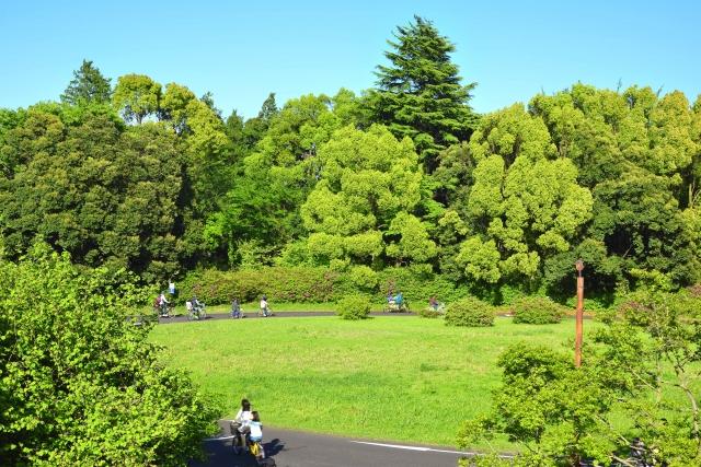 自転車で昭和記念公園を巡る