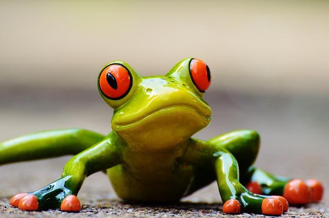 銀座のギャラリーでカエルだらけの作品展を観てきた