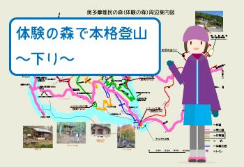 都民体験の森で本格登山〜下り〜
