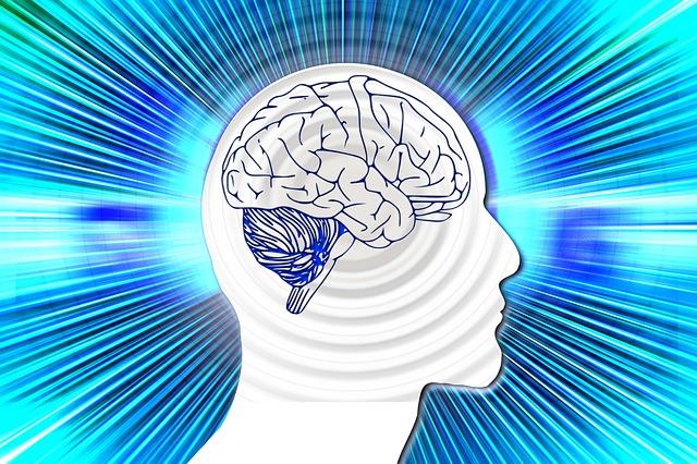 くらげ脳内容量のキャパ越え