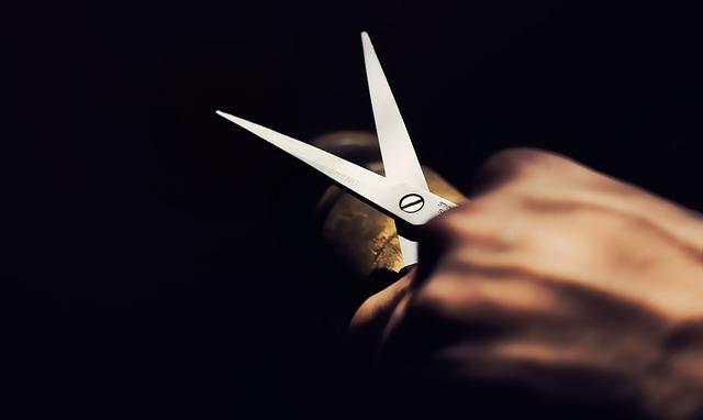 切りにくい素材もさくさく切れちゃう万能ハサミ